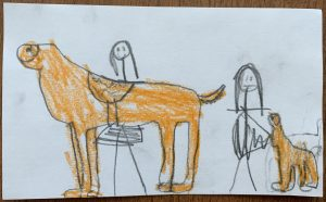 Student Drawn Picture of the two service dogs.